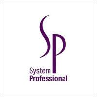 system_logo